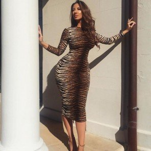 Tiger Skin Printed Long Sleeve Midi Dress