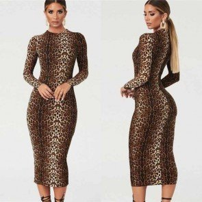 Stunning Long-Sleeved Leopard Print Dress