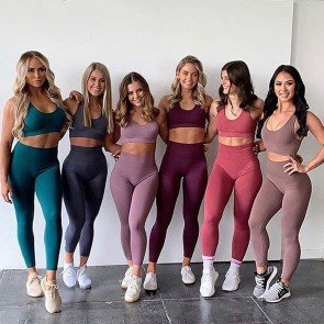 Seamless Sport Bras And High Waisted Leggings Gym Sets