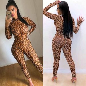Leopard Print Mesh Jumpsuit Women Sexy Party Outfits