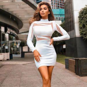 Mesh Stand Collar Long Sleeve Mini Bodycon Dress